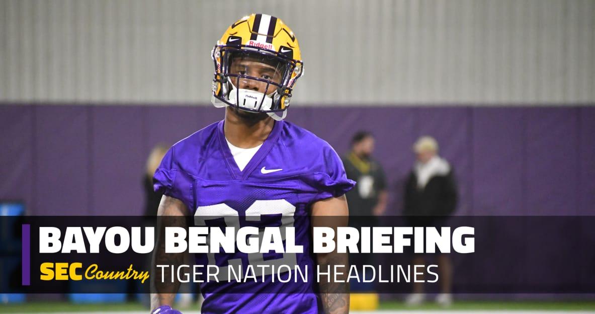 lsu football report tigers